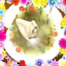 Супы с зеленью из нашего огорода получаются хорошо