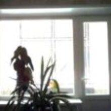 Пластиковое окно на балкон удобно зимой и летом