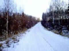 Природа Сибири зимой сделаны фотографии