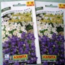 Семена для огорода купим оптом дешевле чем в розницу