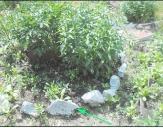 камни вокруг цветочной клумбы