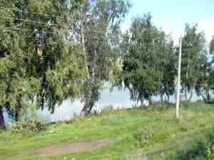 Пруд рядом с деревней Лукино