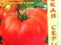 Сорта томатов для рассады частично обновляются ежегодно